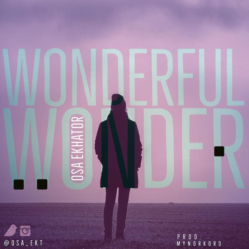 Wonderful Wonder - Osa Ekhator