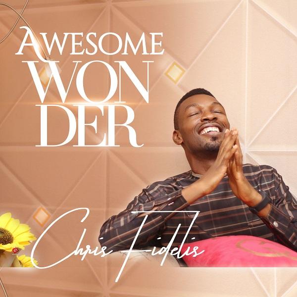 Awesome Wonder - Chris Fidelis