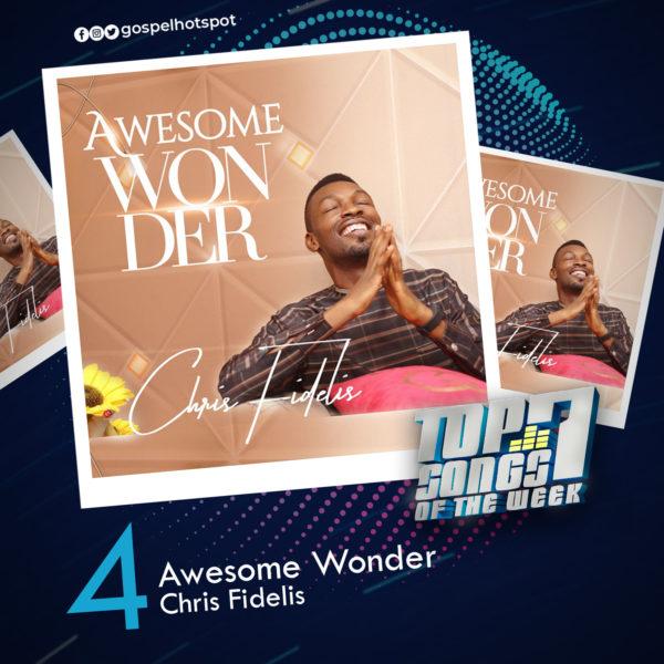 Awesome Wonder – Chris Fidelis