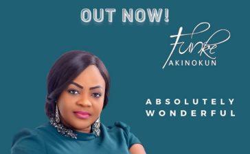 Absolutely Wonderful – Funke Akinokun